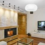 Правила размещения камина в доме: фото идеи